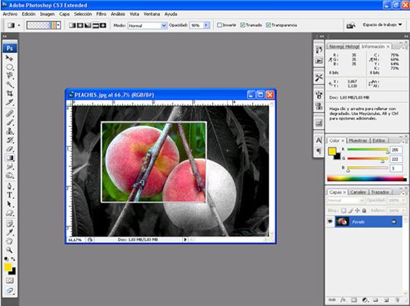 Curso Photoshop Básico