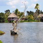 Excursión a Guamá