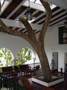 Hotel La Moka. Las Terrazas.Artemisa